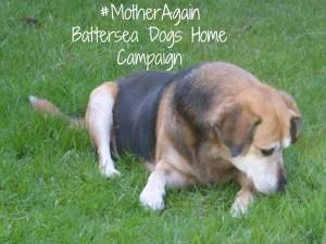 #MotherAgain